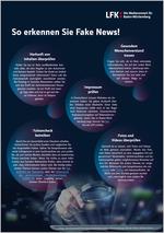 Merkblatt Desinformation Cover
